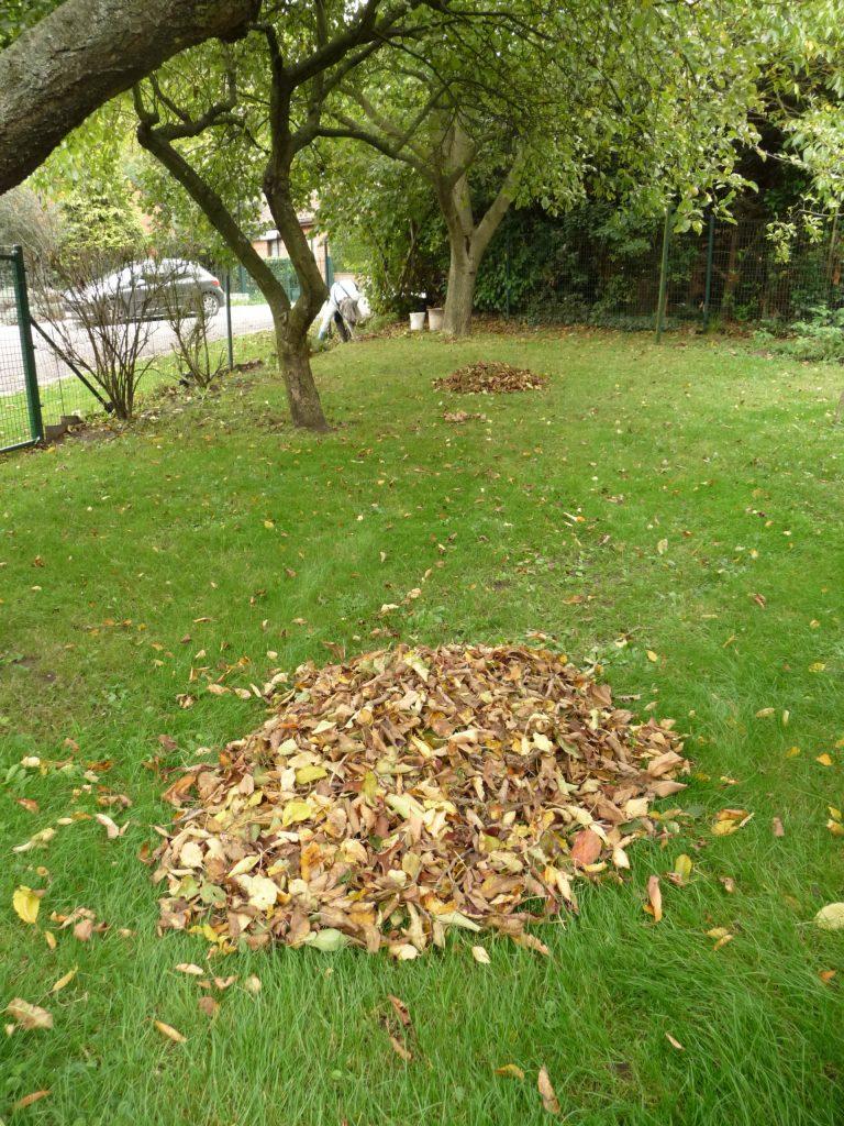 Laub - Einstreu für Komposttoiletten