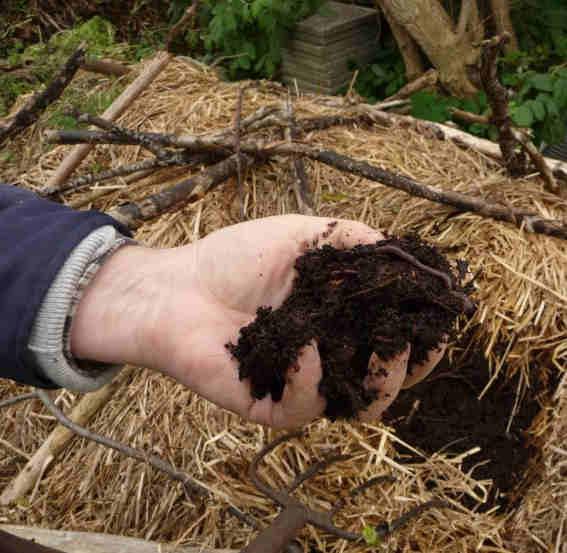 Reifer Kompost. Bei Joseph Orszagh www.eautarcie.org