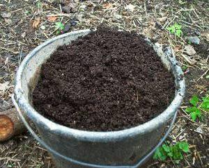 Trocken-Toiletten - Verwertung, Veredelung, Eigennutzung durch Kompostierung - geernteter Kompost