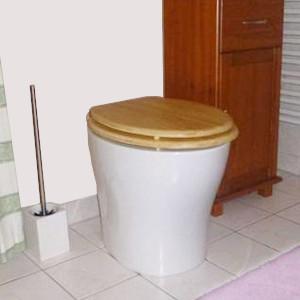 nowato-Shop - Trocken-Trenntoilette GOLDGRUBE - Badezimmer im Wohnhaus